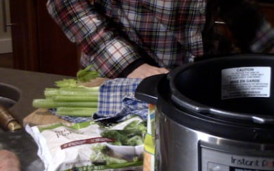 Fresh Food Cooking for Pets Video Recipe