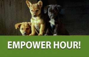 Empower Hour! Using Fish Oils Safely and Effectively
