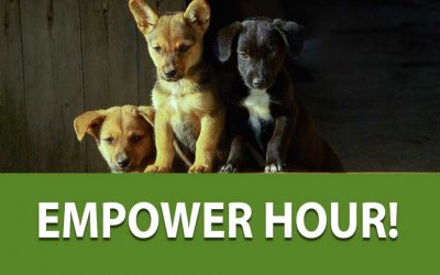 05/20/19 Empower Hour!