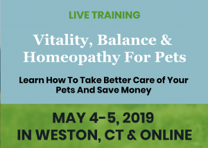 Helping Your Pets Using Vitality, Balance and Homeopathy