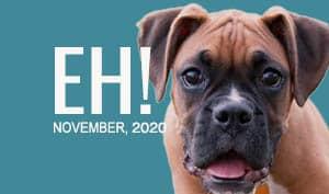 Empower Hour! Geriatrics with Earth Animal