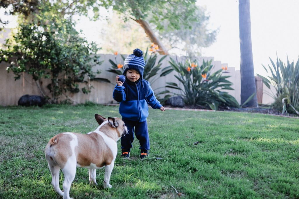 Diverse young little boy playing his pet dog outside in the back yard.