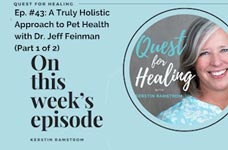 Quest for Healing: A Truly Holistic Approach to Pet Health