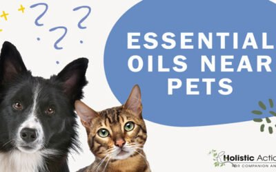 Can I use essential oils around my pets?