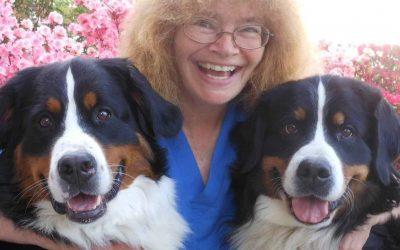 Dr. Sara Fox Chapman's Story